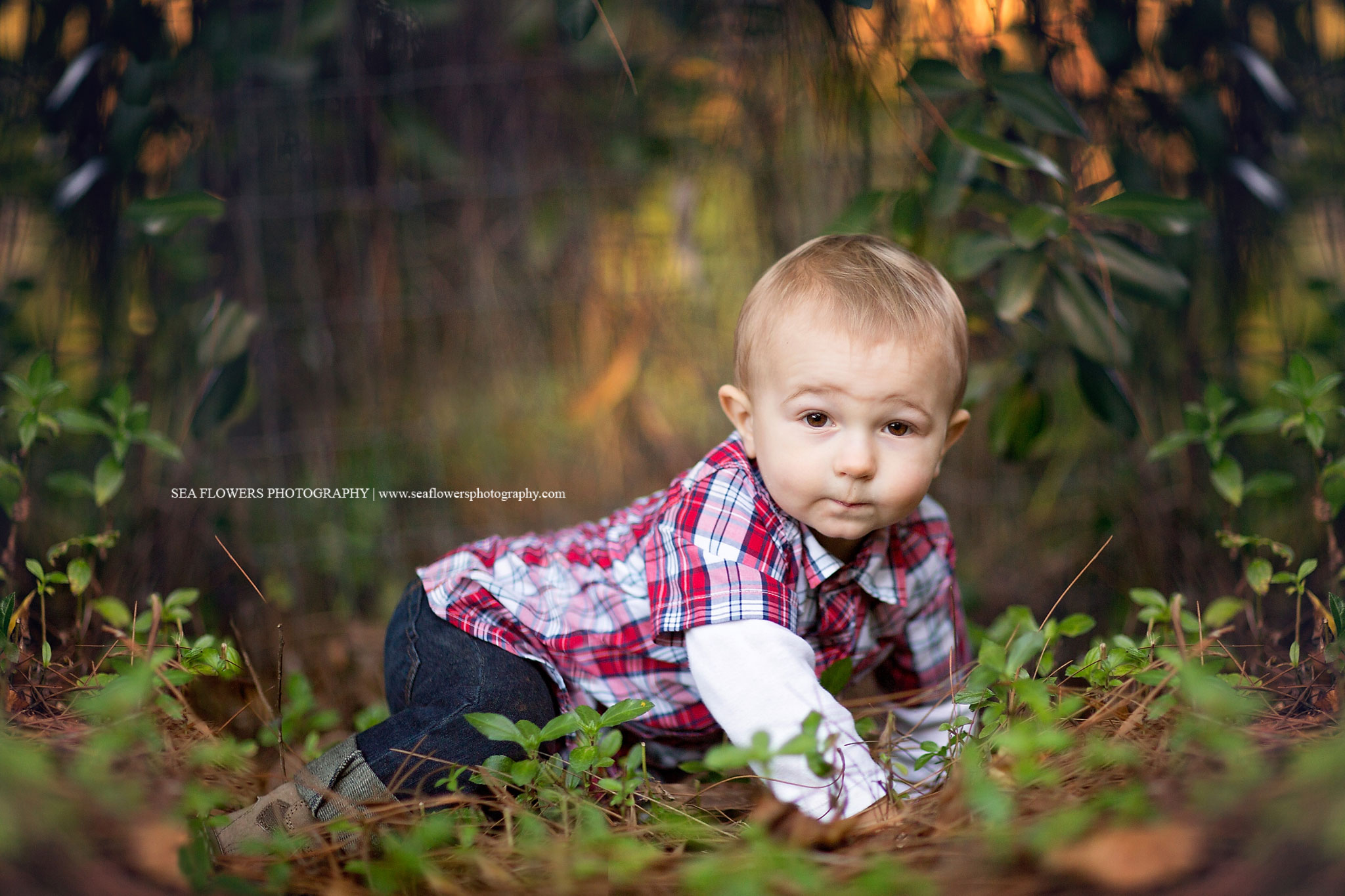 Jupiter Florida Child and Family Photography - Sea Flowers Photography
