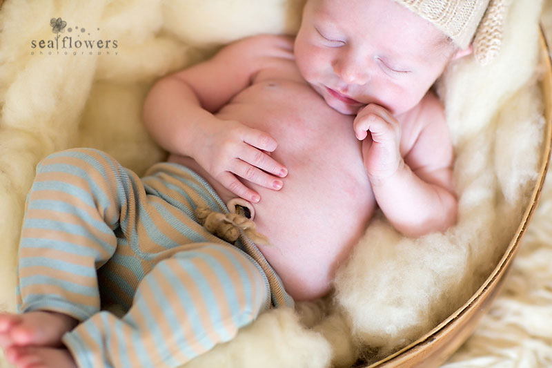 Jupiter South Florida Palm Beach Newborn Photographer - Sea Flowers Photography