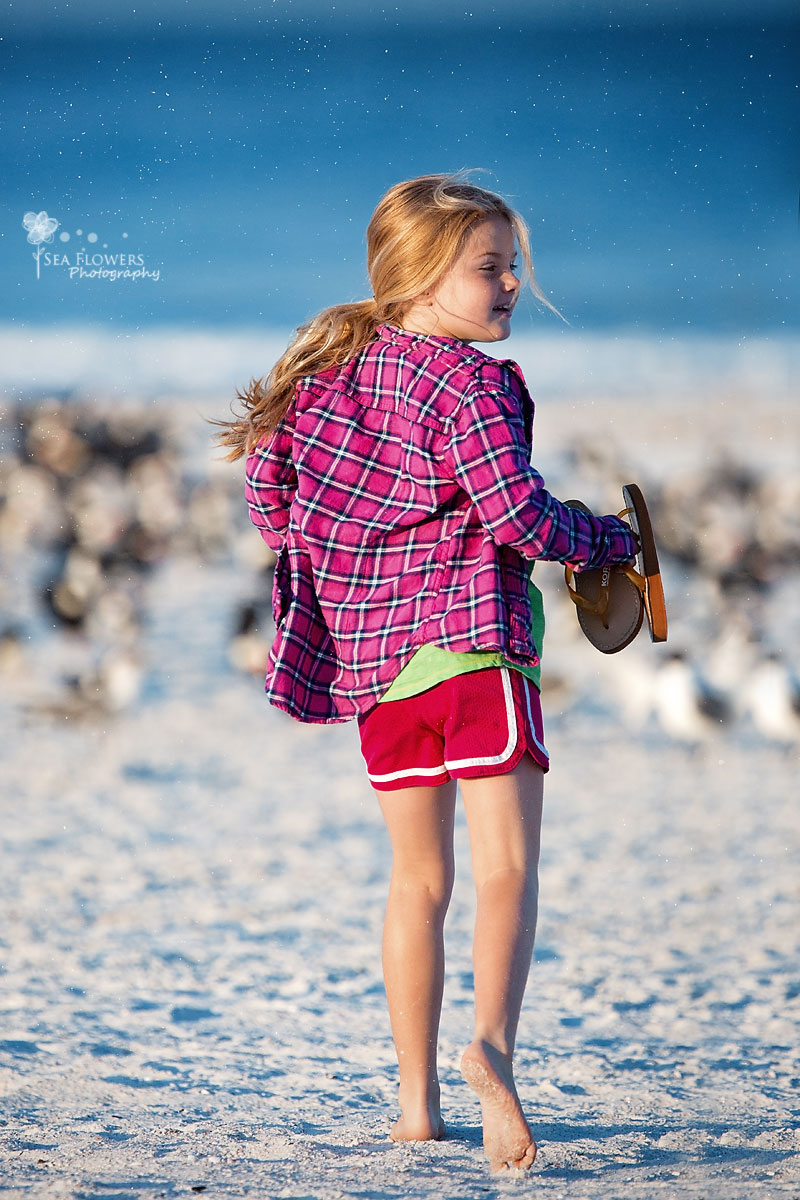 Marco Island Marriott - Family Vacation Beach Photography - Jupiter Florida Sea Flowers Photography