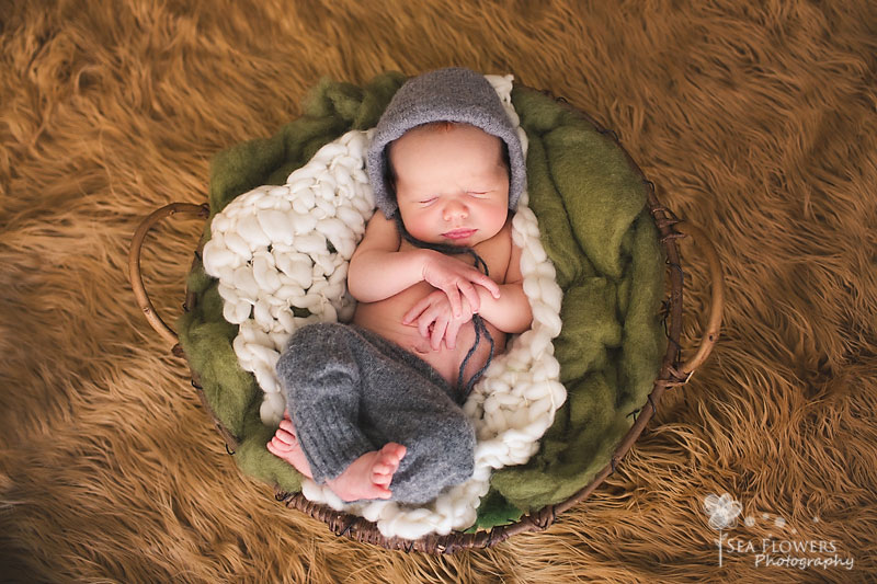 Newborn / Barn Child Photography - Sea Flowers Photography Palm Beach / Jupiter Newborn, Child, Maternity, and Family Photographer