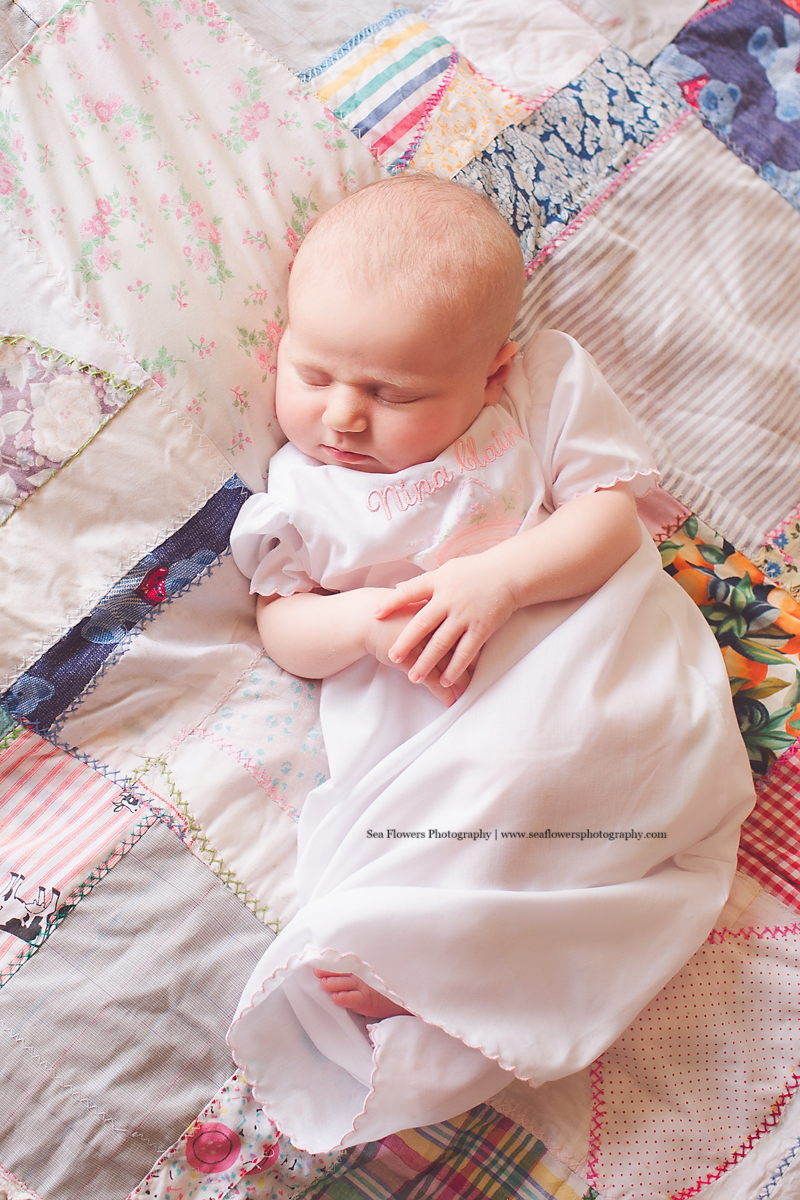 Jupiter Palm Beach Newborn Photography