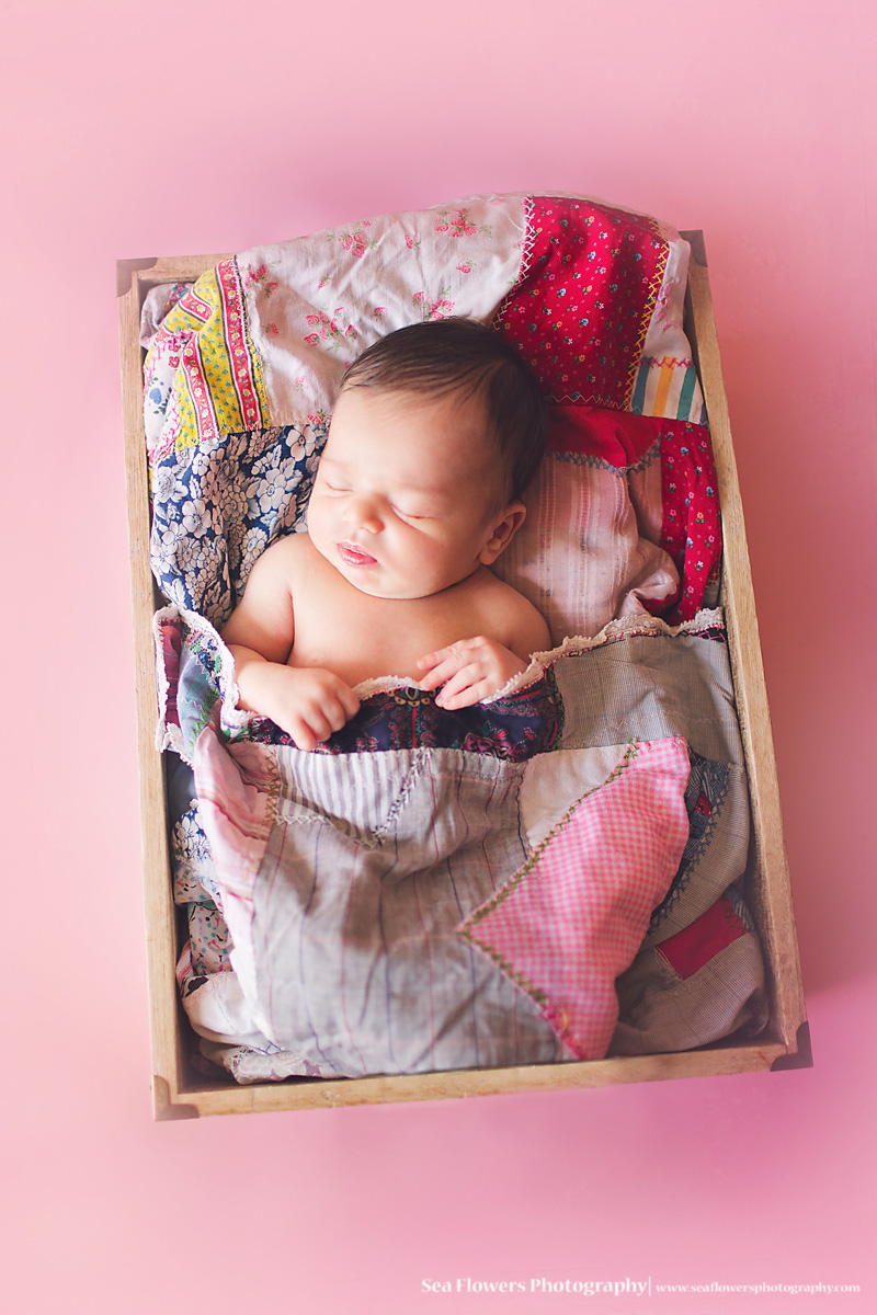 Jupiter Florida newborn Photography -