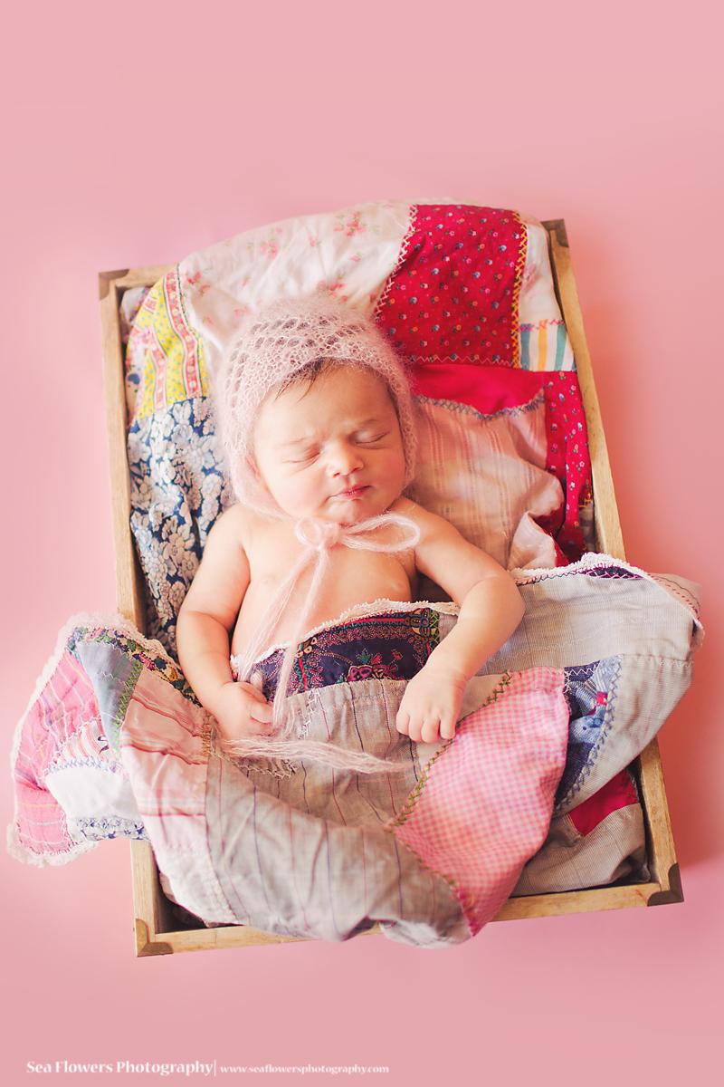 EVJupiter Florida newborn Photography -