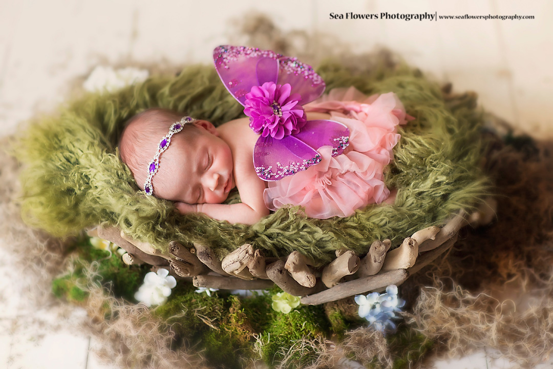 Sea Flowers Photography - Newborn Twin Photography - Jupiter Florida Newborn Photographer