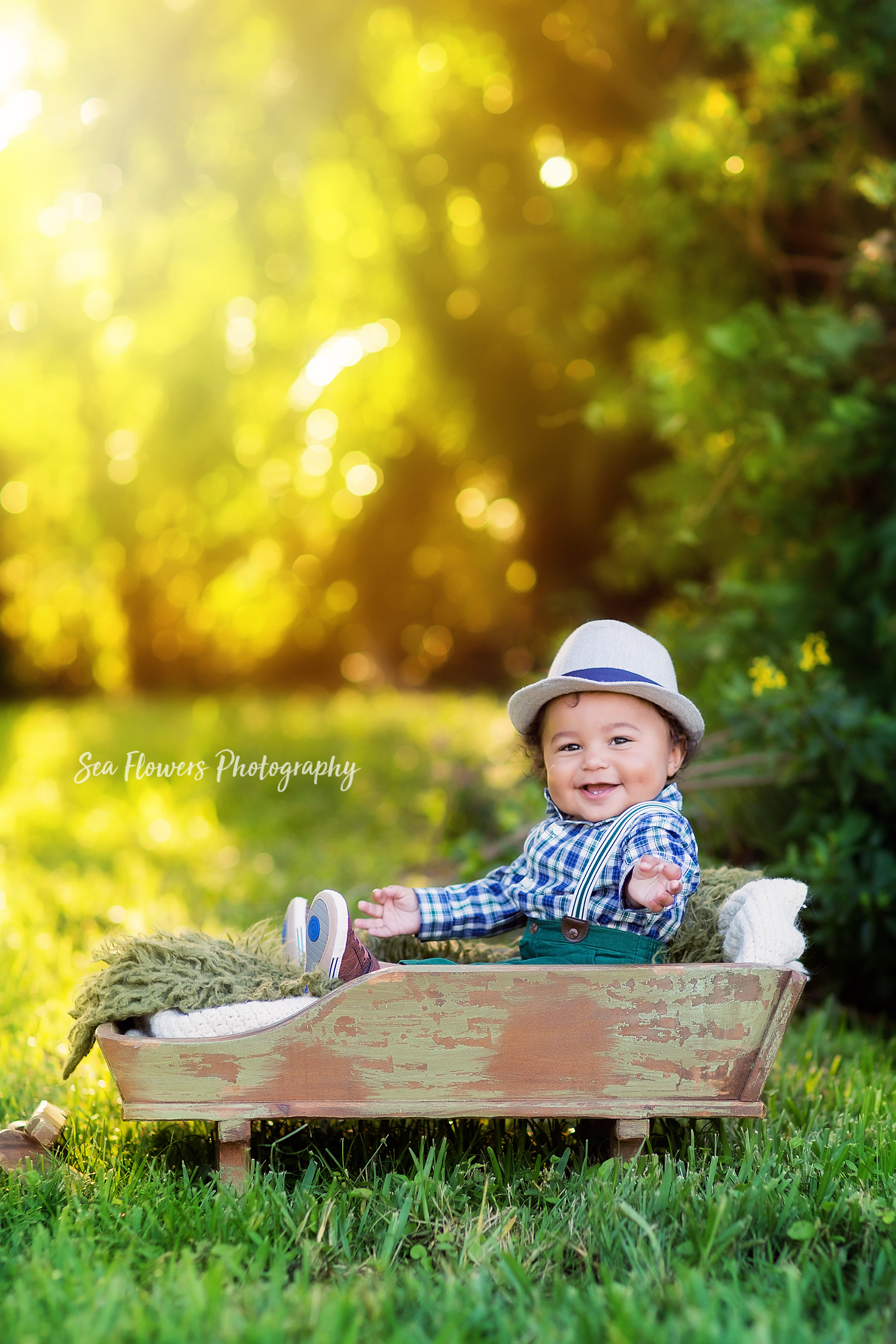 Jupiter Child Photographer - Chirstmas Mini Sessions - Sea Flowers Photography