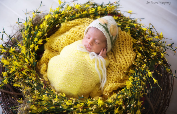 Field of Flowers Newborn Photography - Sea Flowers Photography