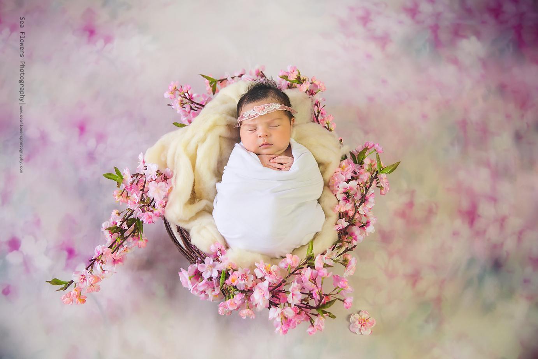 Baby girl newborn photo shoot jupiter newborn photographer sea flowers photography