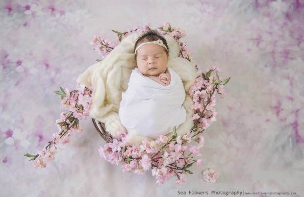 Baby Girl Newborn Photo Shoot Jupiter Newborn Photographer - Sea Flowers Photography