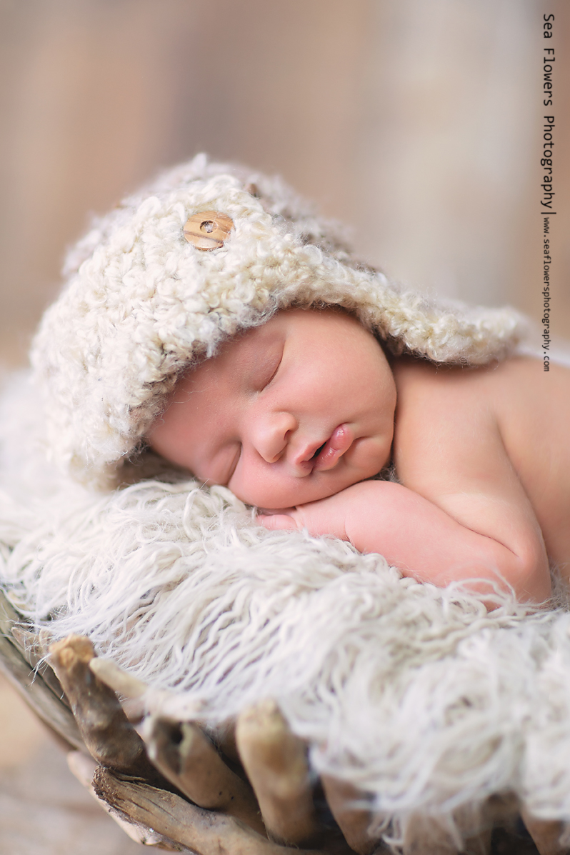 Jupiter Florida Newborn Photographer - Sea Flowers Photography - Baby Boy Photo (43)