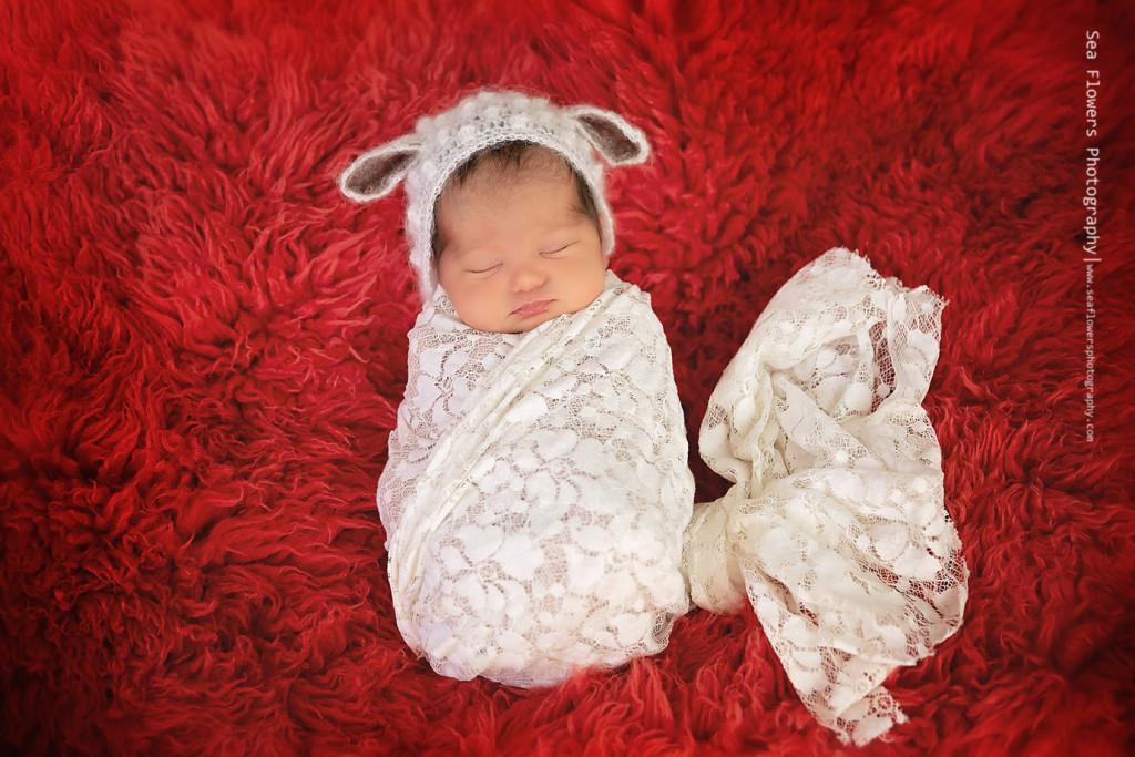 Jupiter Newborn Photographer - Sea Flowers Photography